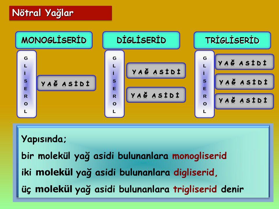 Yapısında; bir molekül yağ asidi bulunanlara monogliserid iki molekül yağ asidi bulunanlara digliserid, üç molekül yağ asidi bulunanlara trigliserid d