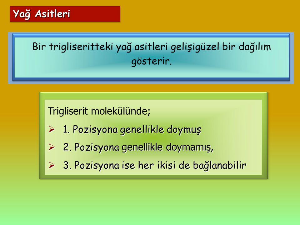 Bir trigliseritteki yağ asitleri gelişigüzel bir dağılım gösterir. Trigliserit molekülünde;  1. Pozisyona genellikle doymuş  2. Pozisyona genellikle