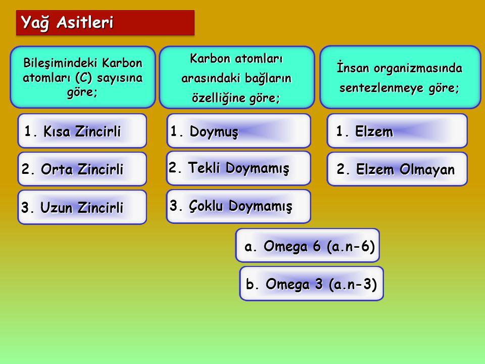 Yağ Asitleri Bileşimindeki Karbon atomları (C) sayısına göre; Karbon atomları arasındaki bağların özelliğine göre; İnsan organizmasında sentezlenmeye