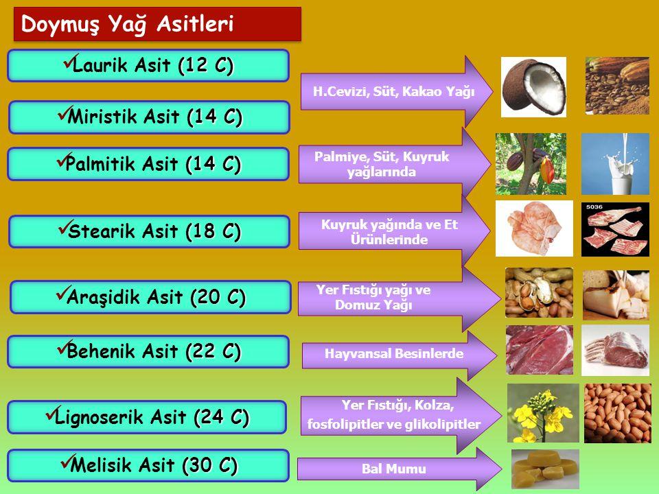 Doymuş Yağ Asitleri (12 C) Laurik Asit (12 C) (14 C) Miristik Asit (14 C) H.Cevizi, Süt, Kakao Yağı (14 C) Palmitik Asit (14 C) Palmiye, Süt, Kuyruk y