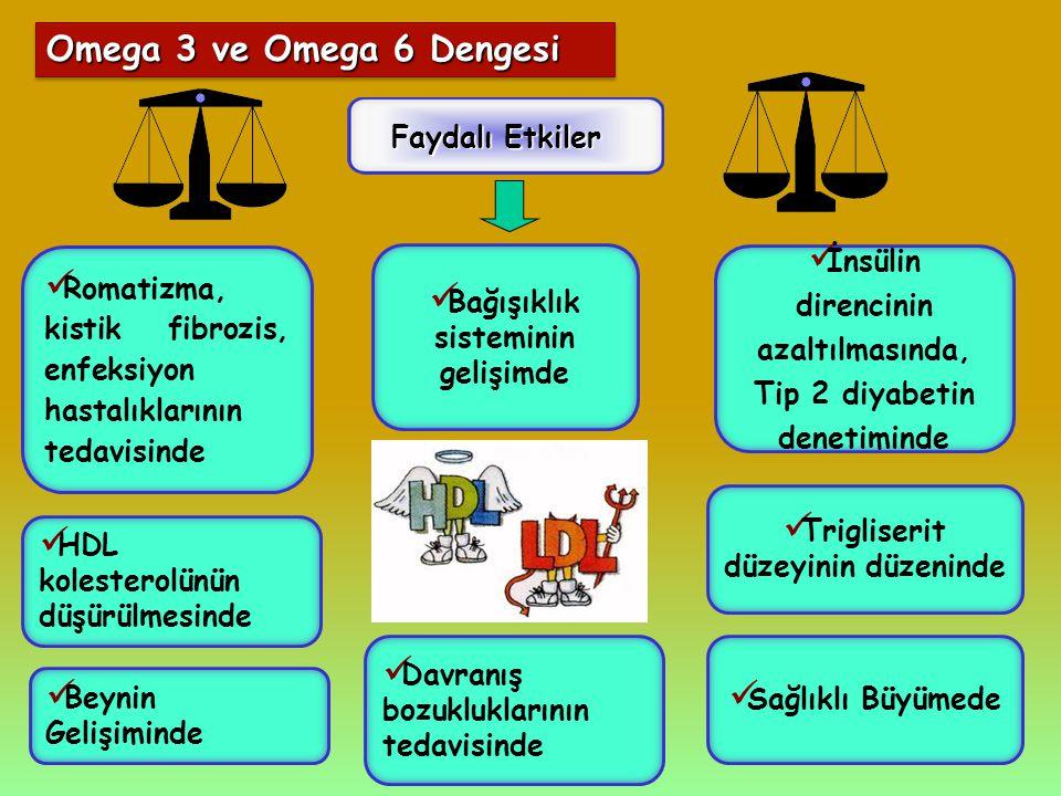Omega 3 ve Omega 6 Dengesi Faydalı Etkiler HDL kolesterolünün düşürülmesinde İnsülin direncinin azaltılmasında, Tip 2 diyabetin denetiminde Romatizma,