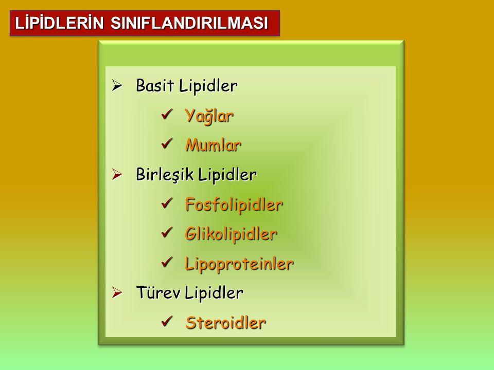  Basit Lipidler Yağlar Yağlar Mumlar Mumlar  Birleşik Lipidler Fosfolipidler Fosfolipidler Glikolipidler Glikolipidler Lipoproteinler Lipoproteinler