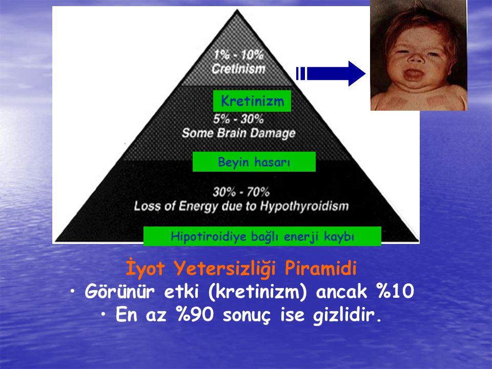 İyot Yetersizliği Piramidi Görünür etki (kretinizm) ancak %10 En az %90 sonuç ise gizlidir. Kretinizm Beyin hasarı Hipotiroidiye bağlı enerji kaybı