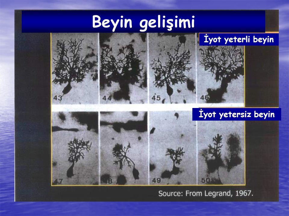 KIR / KENT İYOTLU TUZ KULLANIMI ( % ) 2003 TNSA