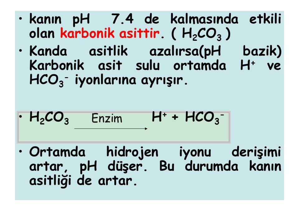 kanın pH 7.4 de kalmasında etkili olan karbonik asittir. ( H 2 CO 3 ) Kanda asitlik azalırsa(pH bazik) Karbonik asit sulu ortamda H + ve HCO 3 - iyonl