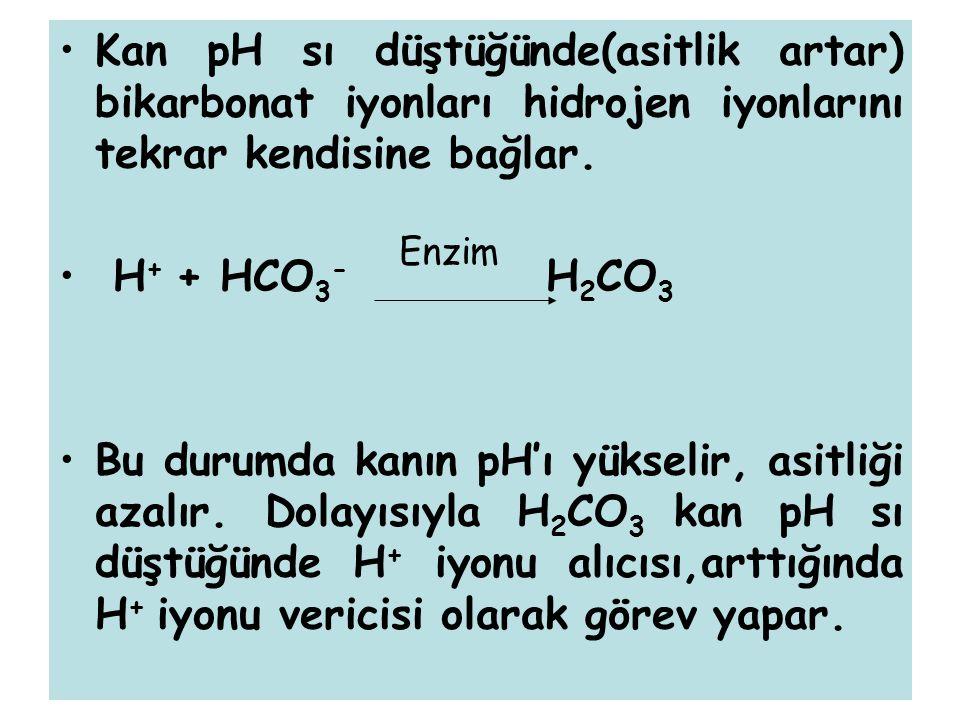 Kan pH sı düştüğünde(asitlik artar) bikarbonat iyonları hidrojen iyonlarını tekrar kendisine bağlar. H + + HCO 3 - H 2 CO 3 Bu durumda kanın pH'ı yüks