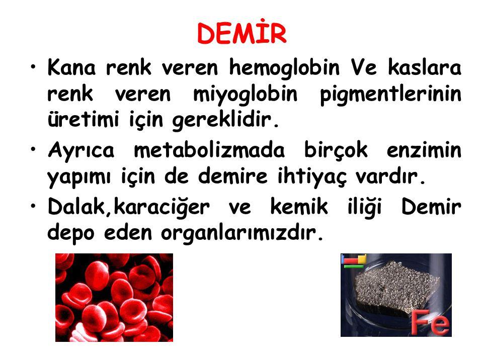 DEMİR Kana renk veren hemoglobin Ve kaslara renk veren miyoglobin pigmentlerinin üretimi için gereklidir. Ayrıca metabolizmada birçok enzimin yapımı i
