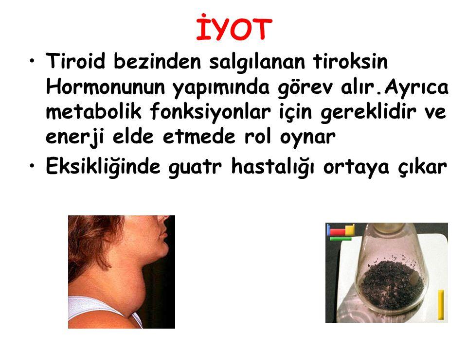 İYOT Tiroid bezinden salgılanan tiroksin Hormonunun yapımında görev alır.Ayrıca metabolik fonksiyonlar için gereklidir ve enerji elde etmede rol oynar Eksikliğinde guatr hastalığı ortaya çıkar