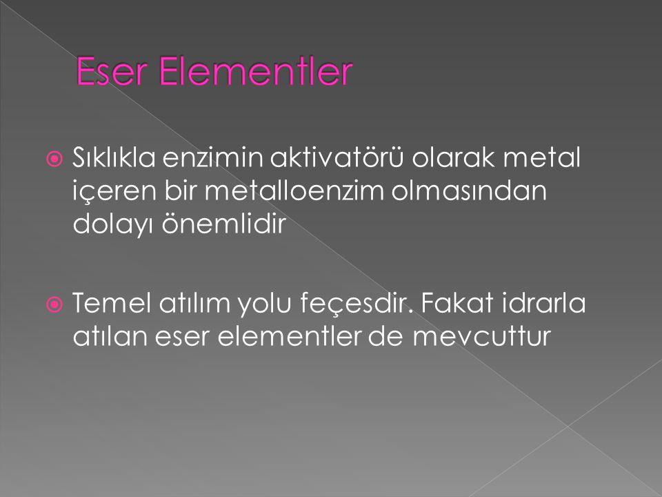 Serum demir düzeyinin normalden yüksek olması hipersideremi olarak tanımlanır.