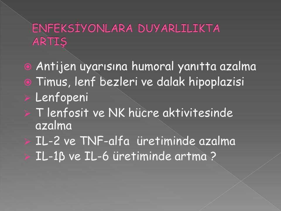  Antijen uyarısına humoral yanıtta azalma  Timus, lenf bezleri ve dalak hipoplazisi  Lenfopeni  T lenfosit ve NK hücre aktivitesinde azalma  IL-2