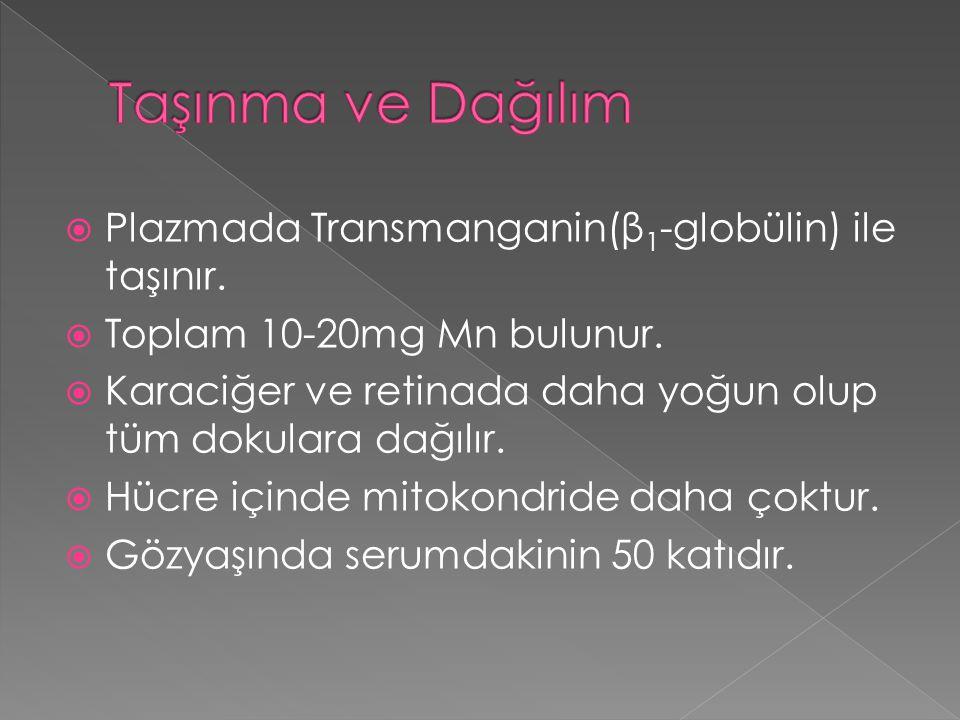  Plazmada Transmanganin(β 1 -globülin) ile taşınır.  Toplam 10-20mg Mn bulunur.  Karaciğer ve retinada daha yoğun olup tüm dokulara dağılır.  Hücr