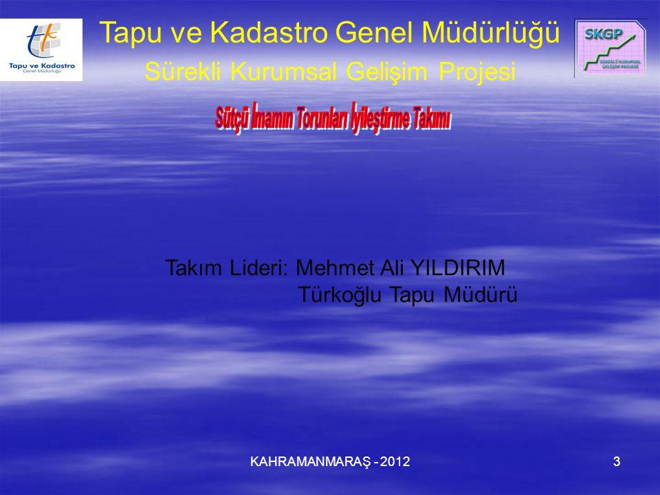KAHRAMANMARAŞ - 20123 Takım Lideri: Mehmet Ali YILDIRIM Türkoğlu Tapu Müdürü Tapu ve Kadastro Genel Müdürlüğü Sürekli Kurumsal Gelişim Projesi