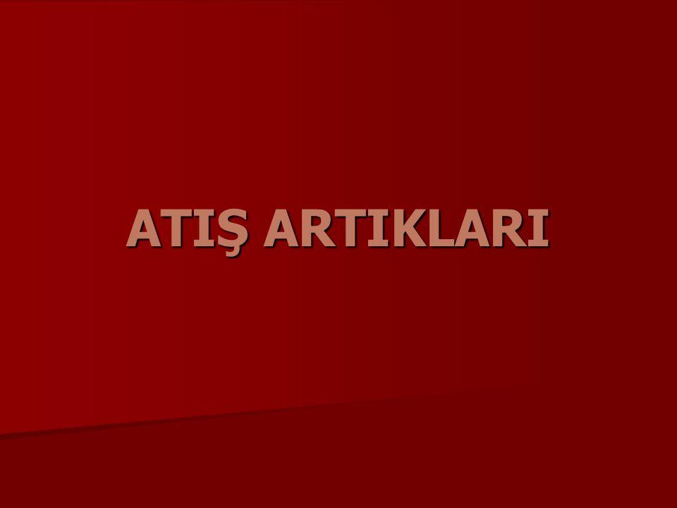 ATIŞ ARTIKLARI