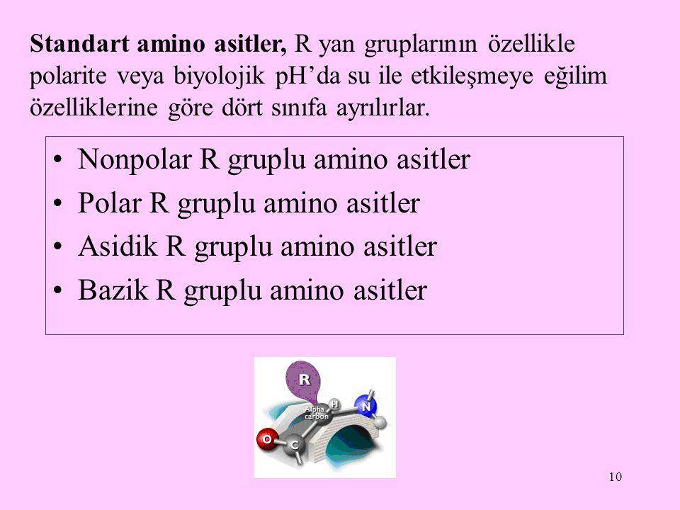 10 Standart amino asitler, R yan gruplarının özellikle polarite veya biyolojik pH'da su ile etkileşmeye eğilim özelliklerine göre dört sınıfa ayrılırl