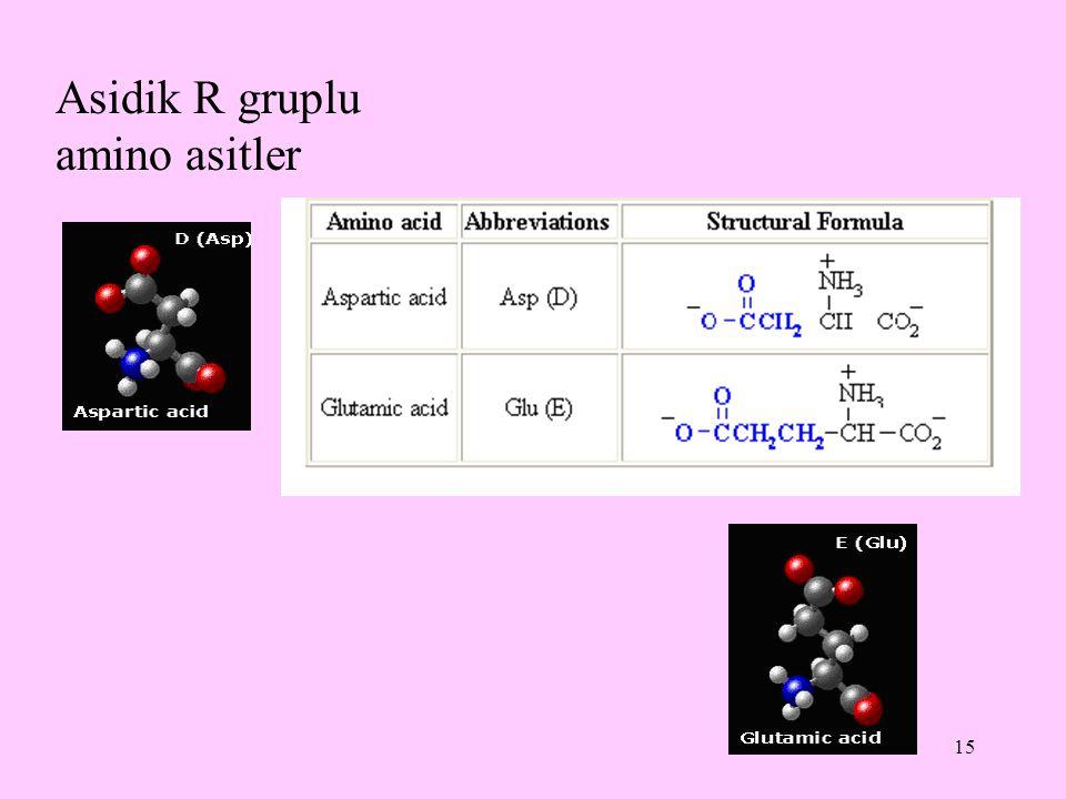 15 Asidik R gruplu amino asitler
