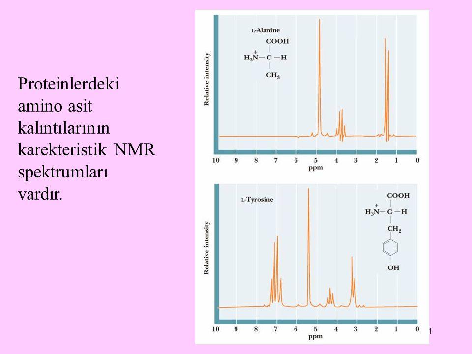 34 Proteinlerdeki amino asit kalıntılarının karekteristik NMR spektrumları vardır.