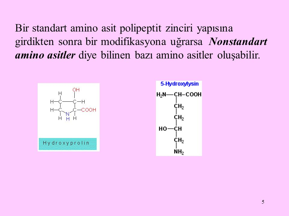 5 Bir standart amino asit polipeptit zinciri yapısına girdikten sonra bir modifikasyona uğrarsa Nonstandart amino asitler diye bilinen bazı amino asit