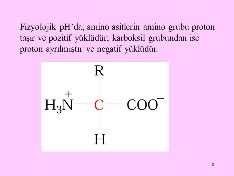 8 Fizyolojik pH'da, amino asitlerin amino grubu proton taşır ve pozitif yüklüdür; karboksil grubundan ise proton ayrılmıştır ve negatif yüklüdür.