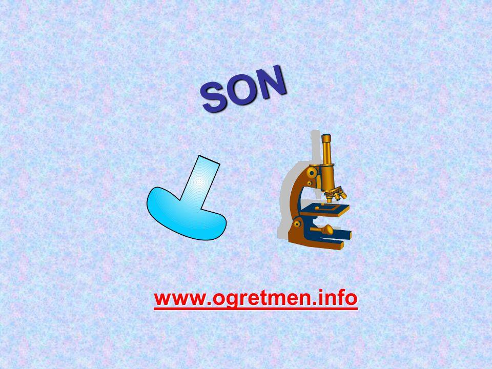 SON www.ogretmen.info