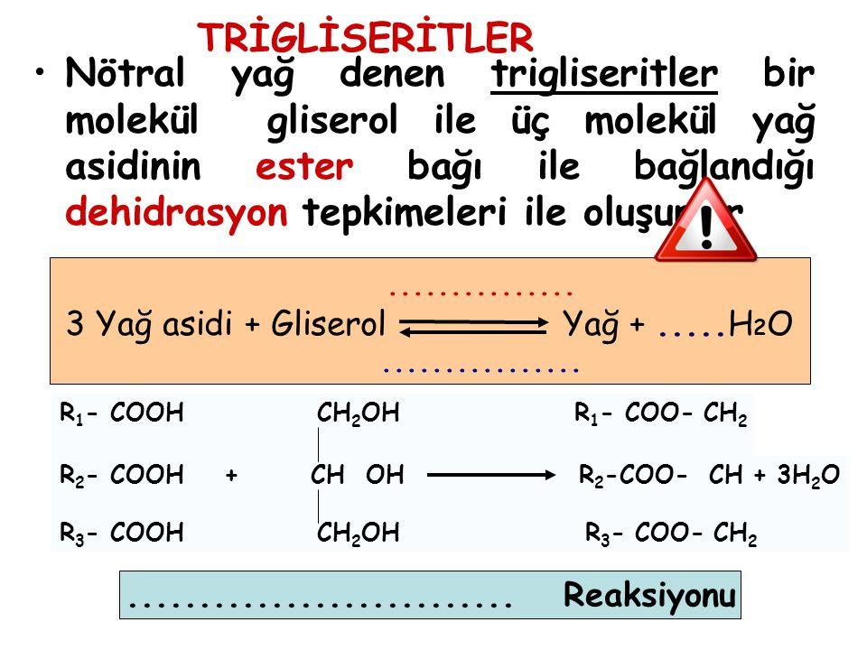 Nötral yağ denen trigliseritler bir molekül gliserol ile üç molekül yağ asidinin ester bağı ile bağlandığı dehidrasyon tepkimeleri ile oluşurlar......