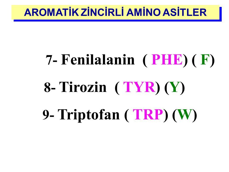 - Yan zincirin nitrojen atomuyla kovalent bağ yaptığı siklik yapıda bir amino asittir - Siklik olmasına rağmen, alifatik özelliktedir Prolin (Pro) P İ