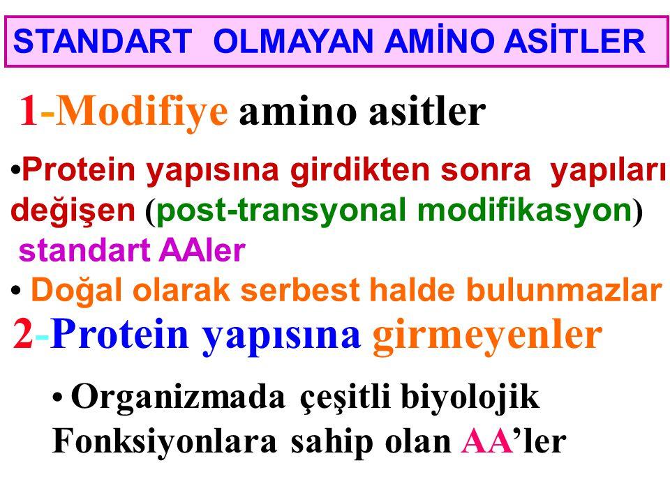 Esansiyel amino asitler Valin (Val)Metiyonin (Met) Lösin (Leu)Treonin (Thr) İzolösin (Ile)Histidin (His)* Fenilalanin (Phe)Arginin (Arg)* Triptofan (T