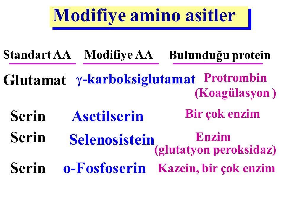 Modifiye amino asitler StandartAA Modifiye AABulunduğu protein Prolin4-OH-prolinKollajen Lizin5-OH-LizinKollajen 4 lizinDesmozinElastin Lizin6-N-metil