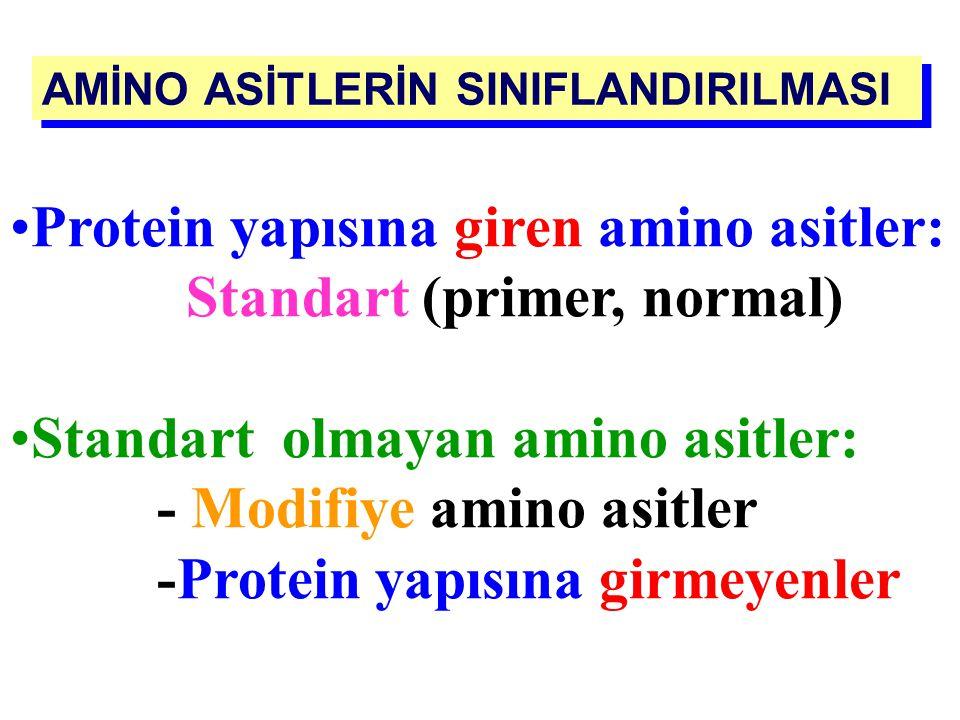 R grubunun - yapısı -büyüklüğü -elektrik yükü A Alerin hidrofilik/hidrofobik (polar / nonpolar) özellikleri özellik kazanmalarına neden olur Sudaki çö
