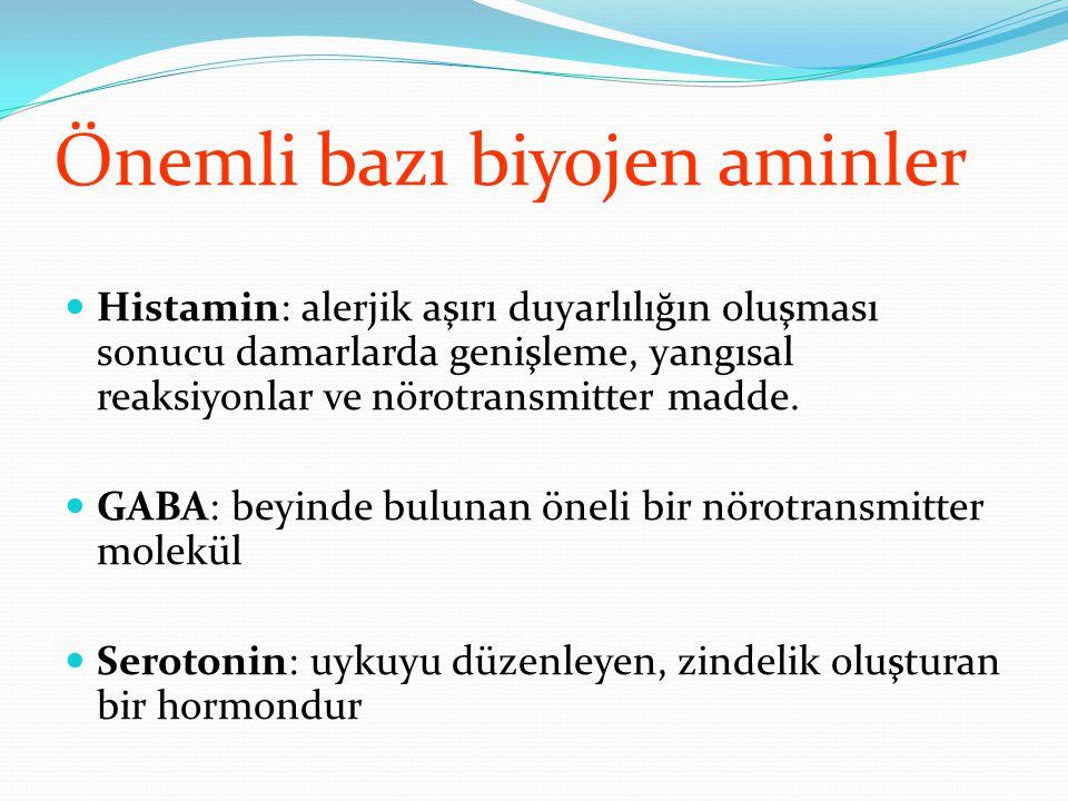 Önemli bazı biyojen aminler Histamin: alerjik aşırı duyarlılığın oluşması sonucu damarlarda genişleme, yangısal reaksiyonlar ve nörotransmitter madde.