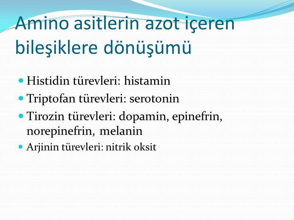 Amino asitlerin azot içeren bileşiklere dönüşümü Histidin türevleri: histamin Triptofan türevleri: serotonin Tirozin türevleri: dopamin, epinefrin, norepinefrin, melanin Arjinin türevleri: nitrik oksit