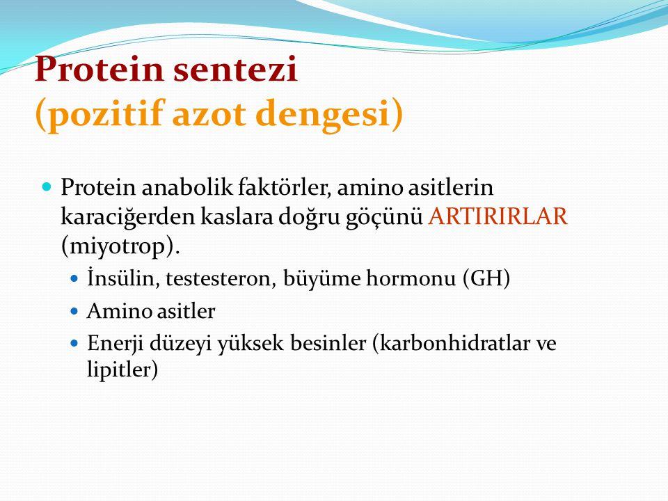 Protein sentezi (pozitif azot dengesi) Protein anabolik faktörler, amino asitlerin karaciğerden kaslara doğru göçünü ARTIRIRLAR (miyotrop). İnsülin, t