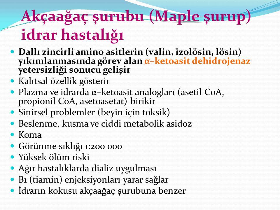 Akçaağaç şurubu (Maple şurup) idrar hastalığı Dallı zincirli amino asitlerin (valin, izolösin, lösin) yıkımlanmasında görev alan α–ketoasit dehidrojen
