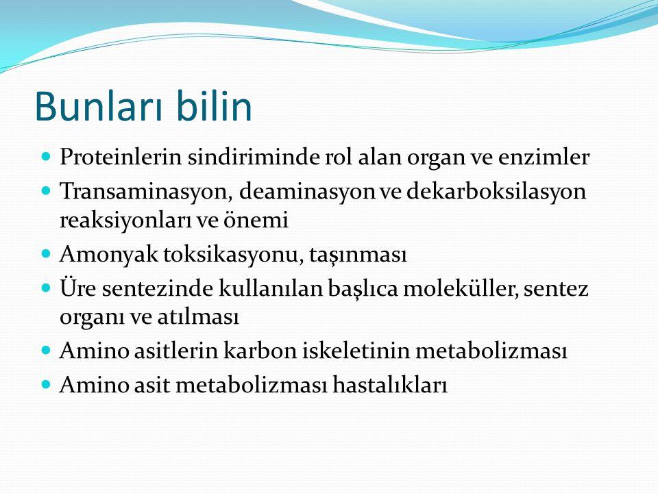 Bunları bilin Proteinlerin sindiriminde rol alan organ ve enzimler Transaminasyon, deaminasyon ve dekarboksilasyon reaksiyonları ve önemi Amonyak toksikasyonu, taşınması Üre sentezinde kullanılan başlıca moleküller, sentez organı ve atılması Amino asitlerin karbon iskeletinin metabolizması Amino asit metabolizması hastalıkları