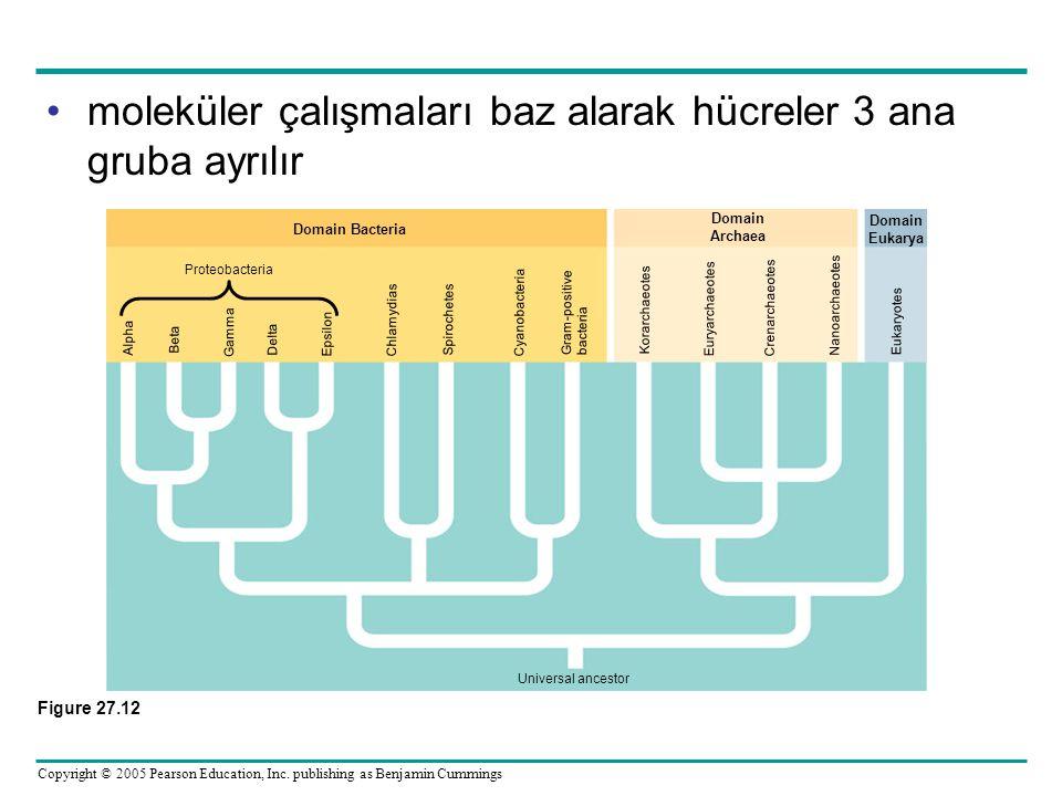 Copyright © 2005 Pearson Education, Inc. publishing as Benjamin Cummings moleküler çalışmaları baz alarak hücreler 3 ana gruba ayrılır Figure 27.12 Do