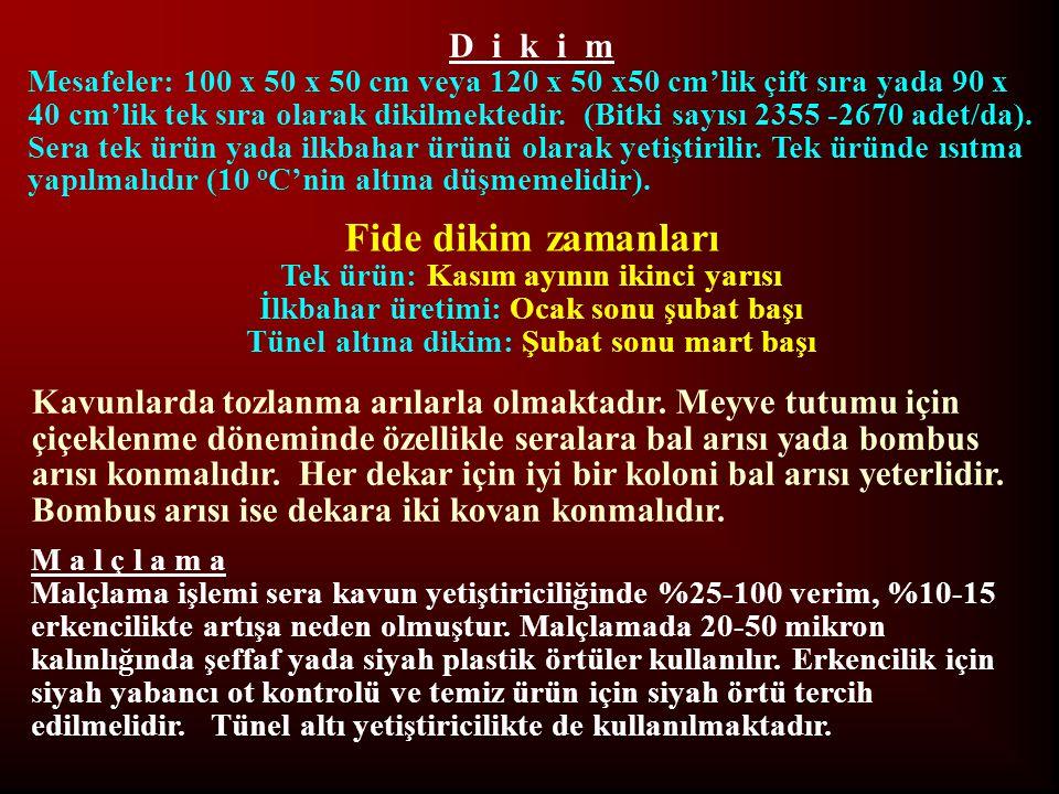 D i k i m Mesafeler: 100 x 50 x 50 cm veya 120 x 50 x50 cm'lik çift sıra yada 90 x 40 cm'lik tek sıra olarak dikilmektedir. (Bitki sayısı 2355 -2670 a