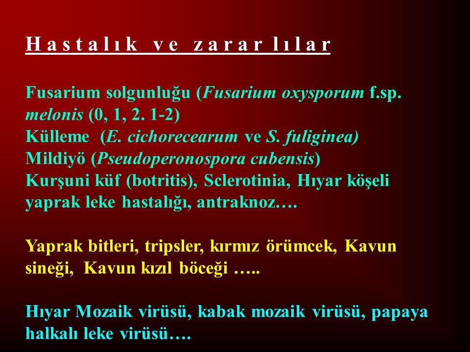 H a s t a l ı k v e z a r a r l ı l a r Fusarium solgunluğu (Fusarium oxysporum f.sp. melonis (0, 1, 2. 1-2) Külleme (E. cichorecearum ve S. fuliginea