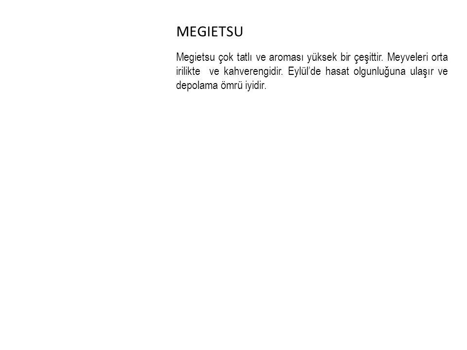 MEGIETSU Megietsu çok tatlı ve aroması yüksek bir çeşittir.