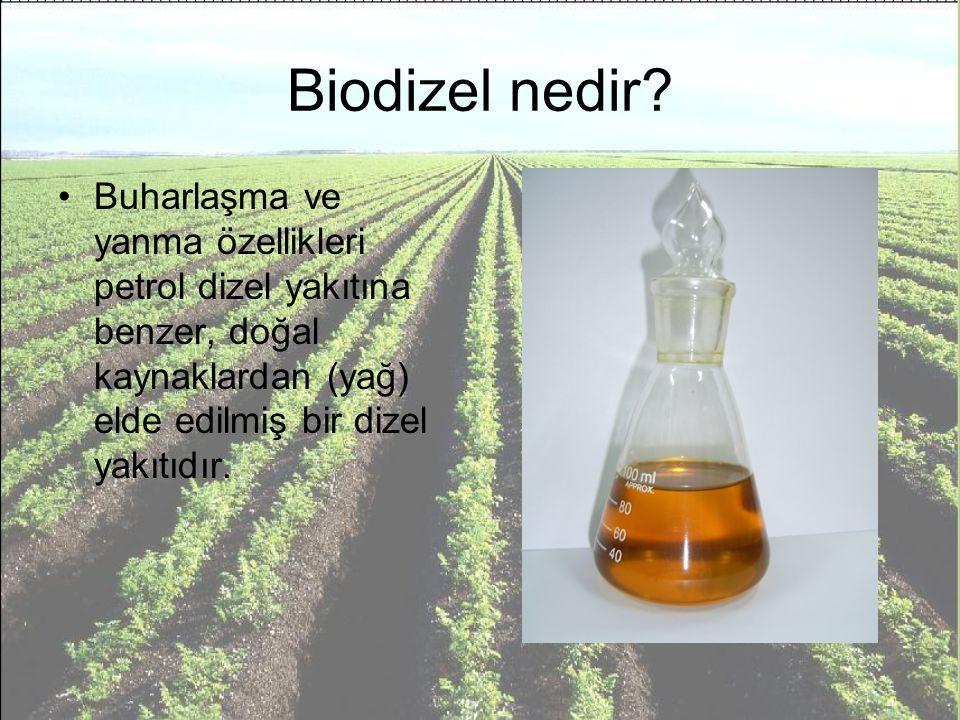 Neden Biodizel.1.Biodizel ekolojik bir yakıttır 2.Biodizel yenilenebilinir kaynaklardan üretilir.
