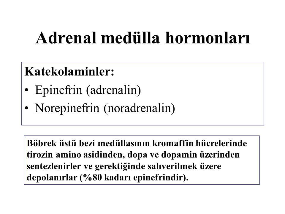 Adrenal medülla hormonları Katekolaminler: Epinefrin (adrenalin) Norepinefrin (noradrenalin) Böbrek üstü bezi medüllasının kromaffin hücrelerinde tiro