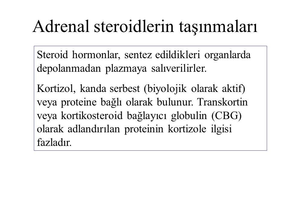 Adrenal steroidlerin taşınmaları Steroid hormonlar, sentez edildikleri organlarda depolanmadan plazmaya salıverilirler. Kortizol, kanda serbest (biyol