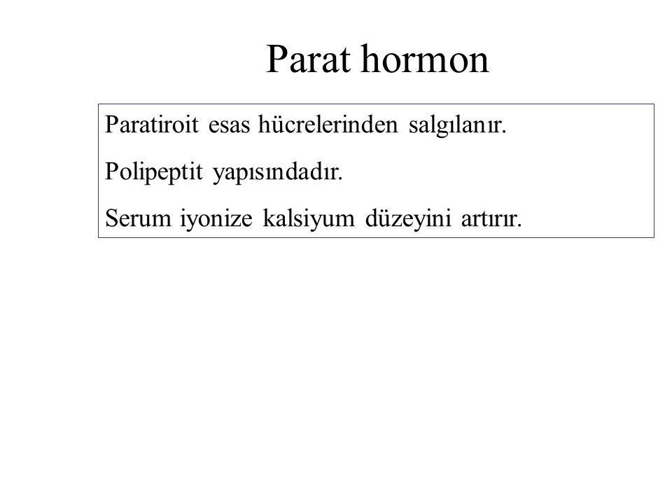 Parat hormon Paratiroit esas hücrelerinden salgılanır. Polipeptit yapısındadır. Serum iyonize kalsiyum düzeyini artırır.