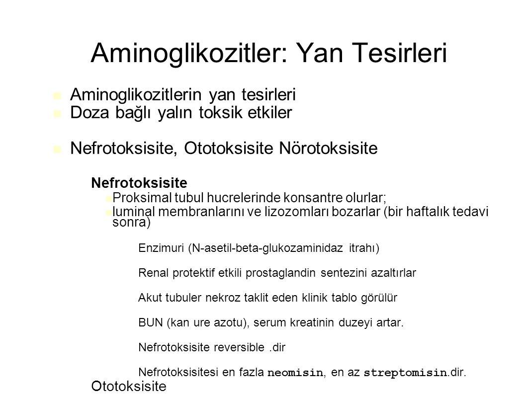 Aminoglikozitler: Yan Tesirleri Aminoglikozitlerin yan tesirleri Doza bağlı yalın toksik etkiler Nefrotoksisite, Ototoksisite Nörotoksisite – Nefrotoksisite Proksimal tubul hucrelerinde konsantre olurlar; luminal membranlarını ve lizozomları bozarlar (bir haftalık tedavi sonra) – Enzimuri (N-asetil-beta-glukozaminidaz itrahı) – Renal protektif etkili prostaglandin sentezini azaltırlar – Akut tubuler nekroz taklit eden klinik tablo görülür – BUN (kan ure azotu), serum kreatinin duzeyi artar.