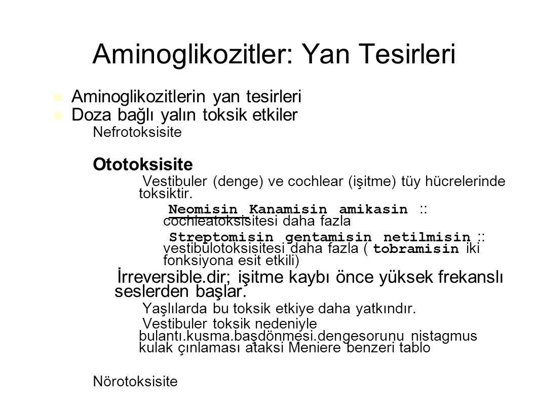 Aminoglikozitler: Yan Tesirleri Aminoglikozitlerin yan tesirleri Doza bağlı yalın toksik etkiler – Nefrotoksisite – Ototoksisite – Vestibuler (denge)