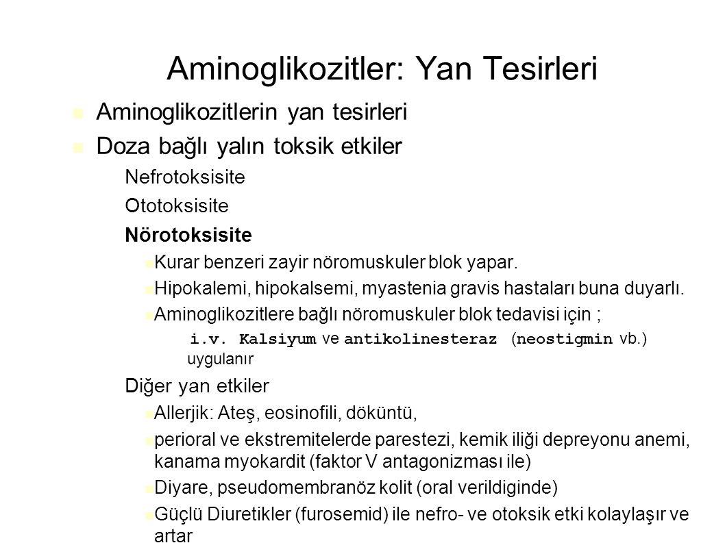 Aminoglikozitler: Yan Tesirleri Aminoglikozitlerin yan tesirleri Doza bağlı yalın toksik etkiler – Nefrotoksisite – Ototoksisite – Nörotoksisite Kurar