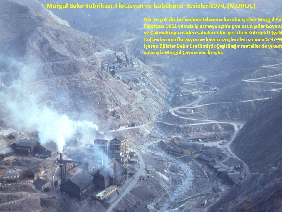Murgul Bakır Fabrikası, Flotasyon ve İzabehane Tesisleri1974, (N.ORUÇ) Dar ve çok dik bir vadinin tabanına kurulmuş olan Murgul Bakır Fabrikası 1951 yılında işletmeye açılmış ve uzun yıllar boyunca Damar ve Çakmakkaya maden sahalarından getirilen Kalkopirit (yaklaşık %1 Cu)cevherinin flotasyon ve kavurma işlemleri sonucu % 97-98 Cu içeren Bilister Bakır üretilmiştir.Çeşitli ağır metaller de yıkama sularıyla Murgul Çayına verilmiştir.