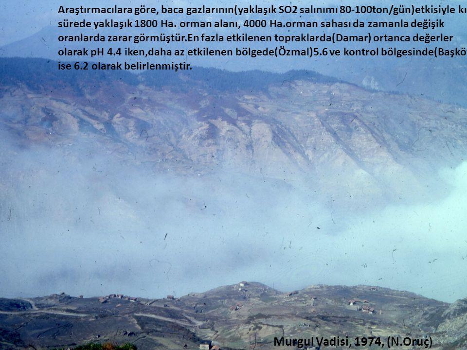 Araştırmacılara göre, baca gazlarının(yaklaşık SO2 salınımı 80-100ton/gün)etkisiyle kısa sürede yaklaşık 1800 Ha.