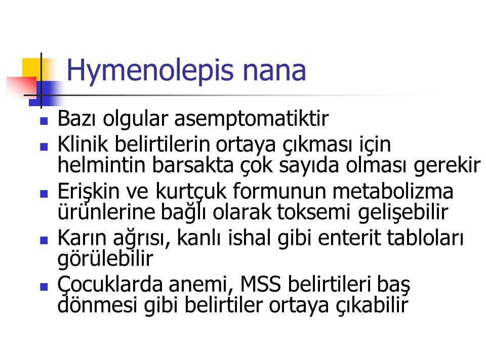 Bazı olgular asemptomatiktir Klinik belirtilerin ortaya çıkması için helmintin barsakta çok sayıda olması gerekir Erişkin ve kurtçuk formunun metaboli