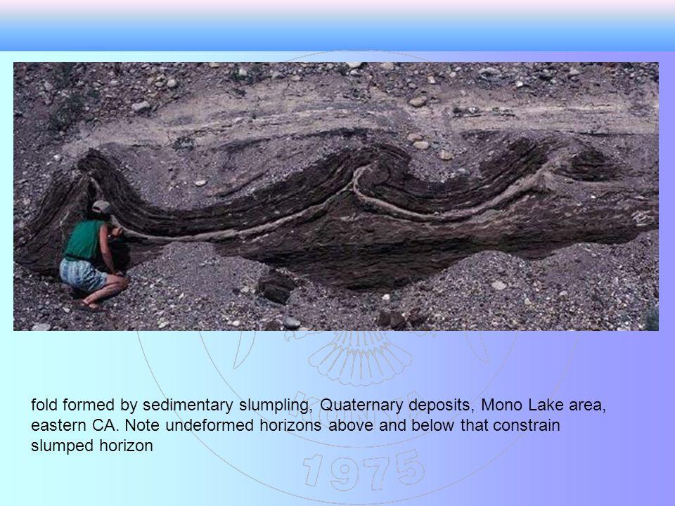 fold formed by sedimentary slumpling, Quaternary deposits, Mono Lake area, eastern CA.