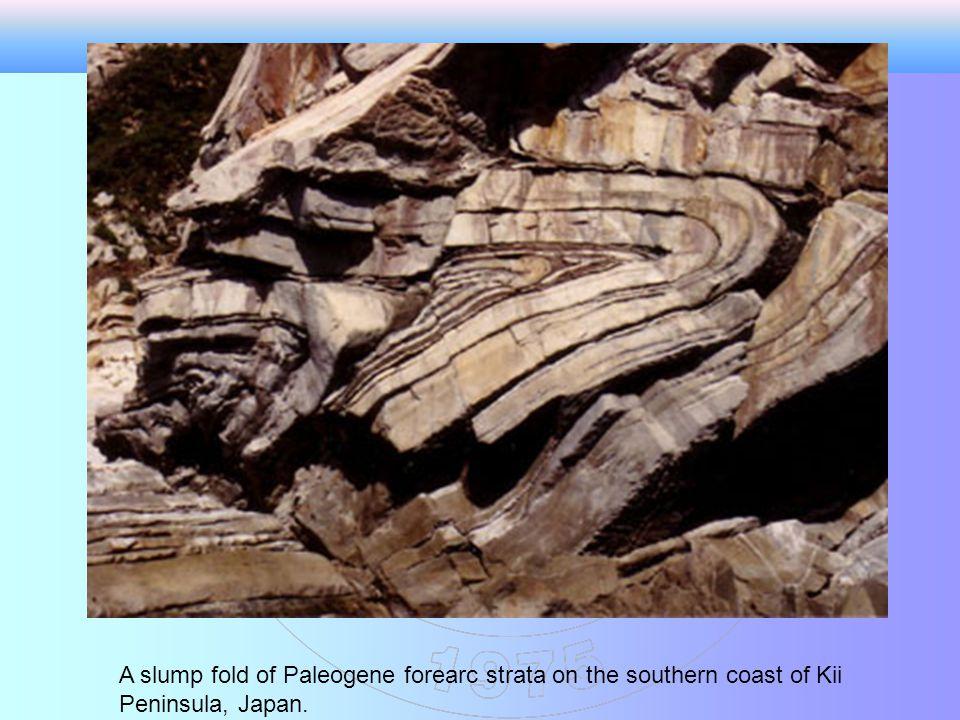 A slump fold of Paleogene forearc strata on the southern coast of Kii Peninsula, Japan.