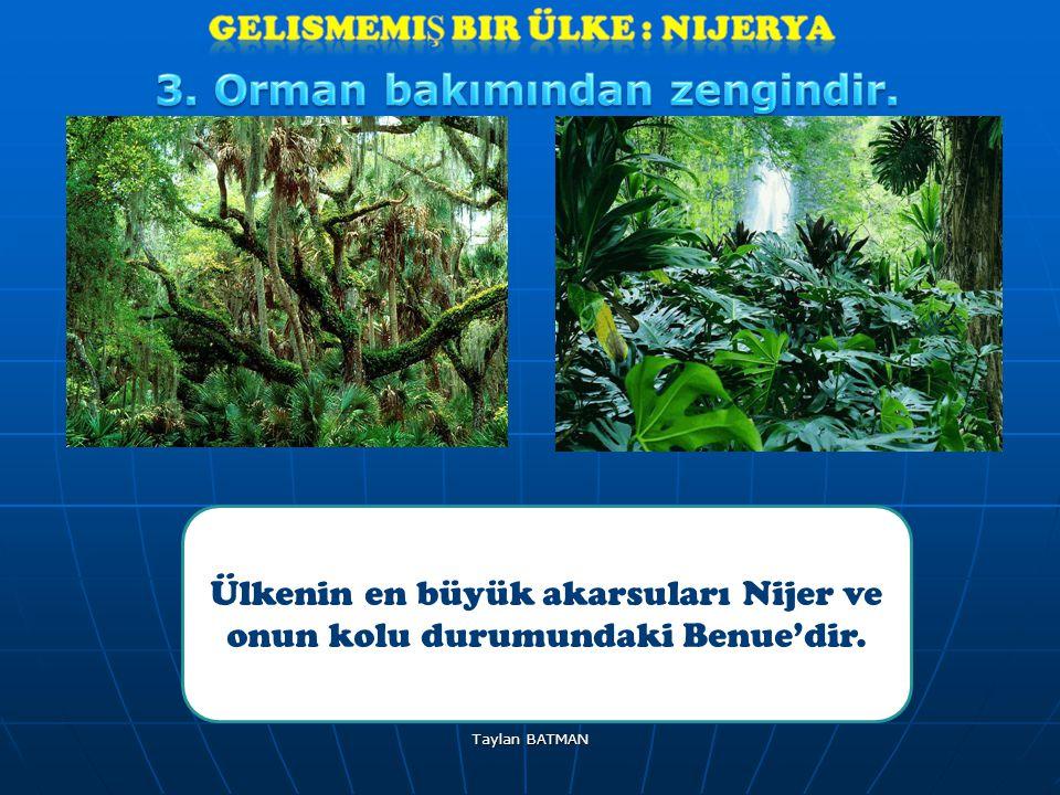 Ülkenin en büyük akarsuları Nijer ve onun kolu durumundaki Benue'dir.